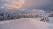 winterlandschaft-schneelandschaft