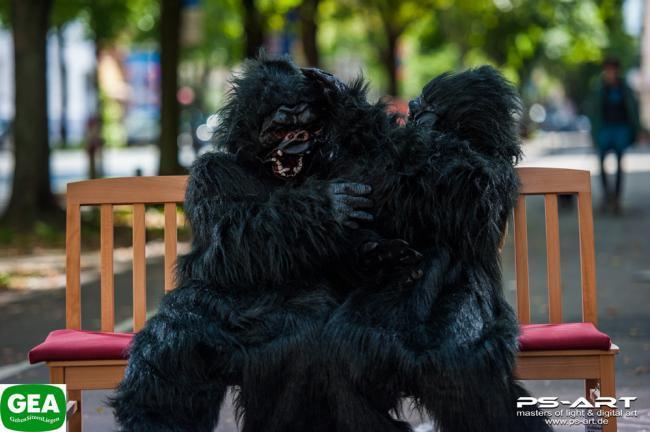 gorillas-auf-bank