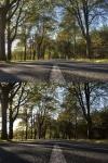 landschaftsfotograf-vergleich